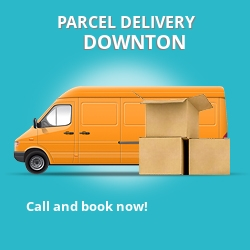 EX20 cheap parcel delivery services in Downton